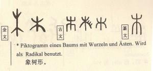 Vom Ursprung der chinesischen Schrift (Sinolingua Beijing 1997)