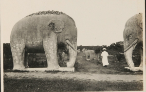 Elephants in 1990 in Nanjing
